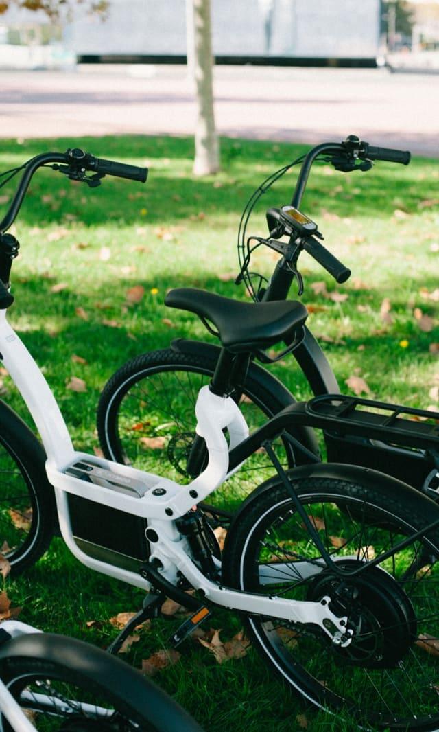Plan e-cycling