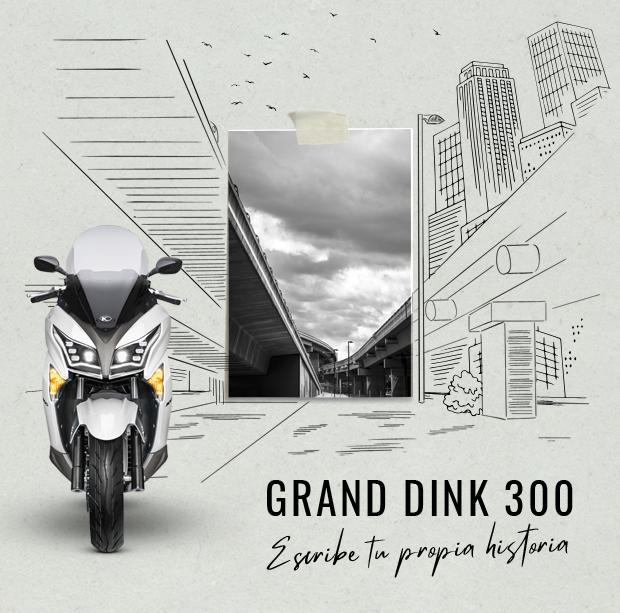Nuevo Grand Dink 300